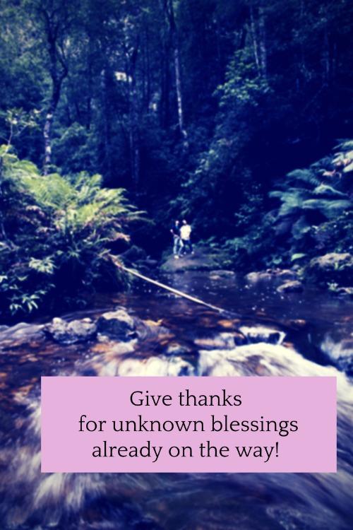 gratitude and trust