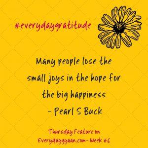 #everydaygratitude week 6
