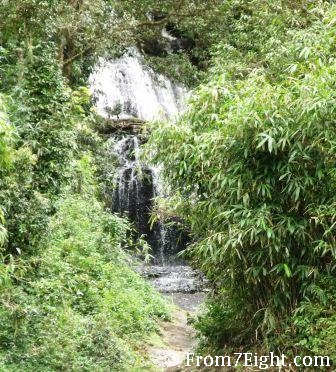 Gavi - An Escape To Wilderness