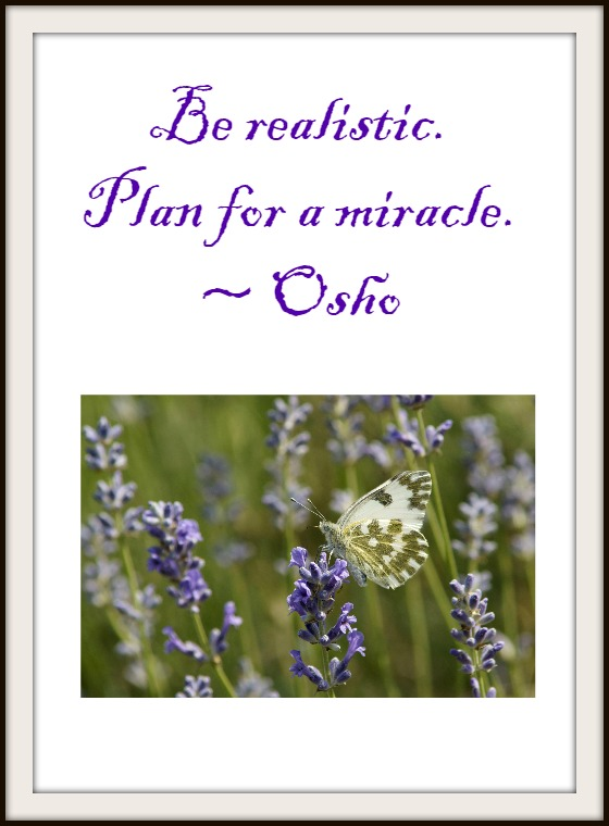 Be Realistic Plan For A Miracle  #MicroblogMondays