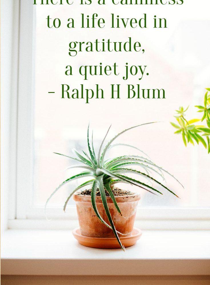 The Quiet Joy Of Gratitude