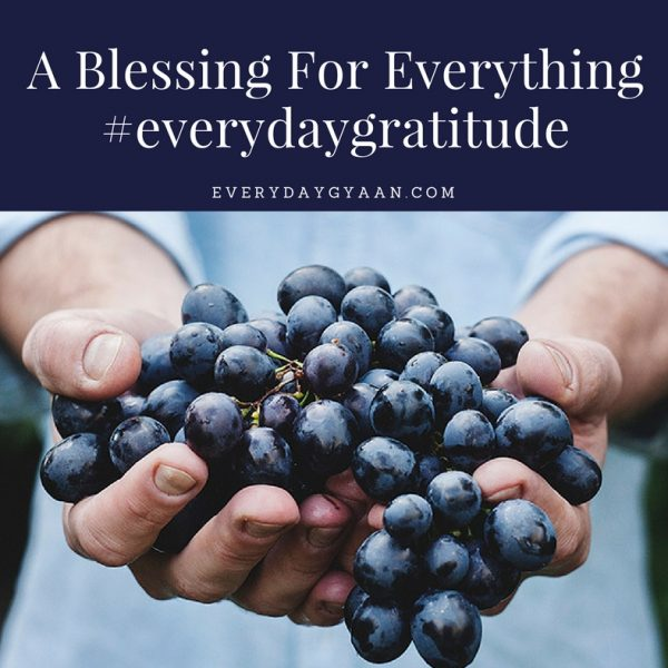 A Blessing For Everything #everydaygratitude