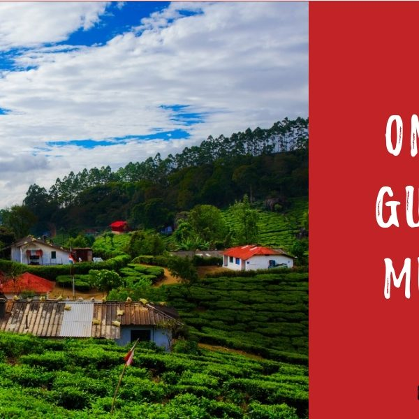 One Day Guide To Munnar