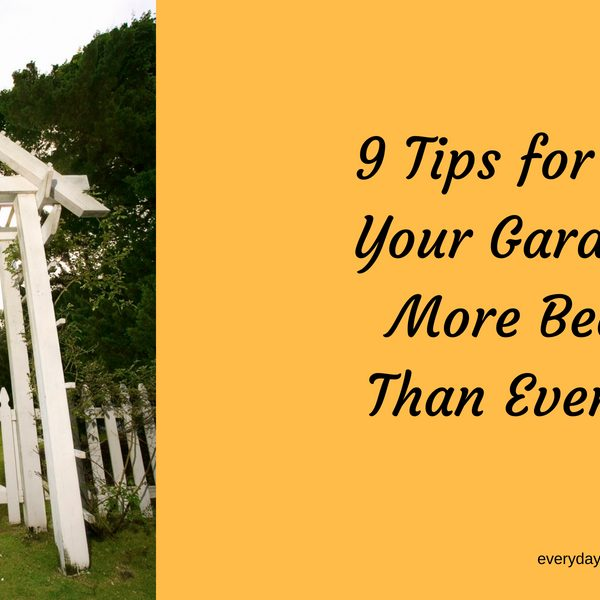 9 Tips for Making Your Garden Look More Beautiful Than Ever Before