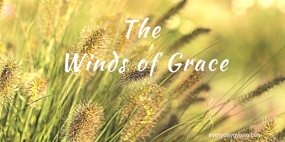 the winds of grace