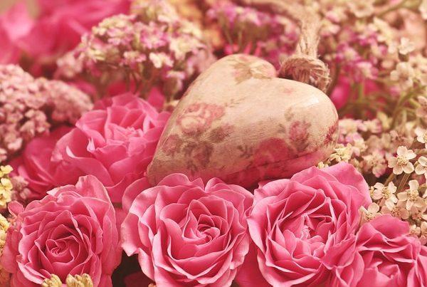 Beautiful Blooms #FridayReflections